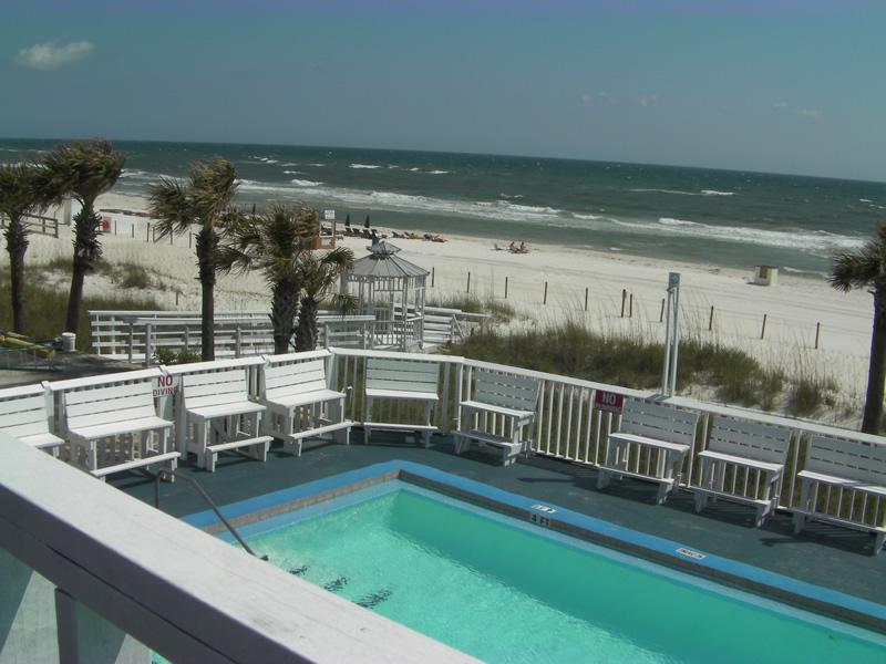 Spring Break Panama City Beach Palm Grove